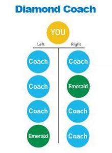 d-coach