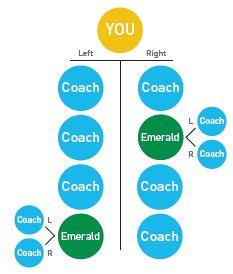 diamond-coach-rank